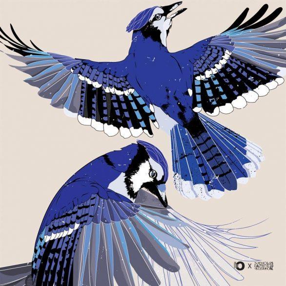 Blue Jays Mini