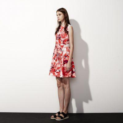 Printed Flare Dress