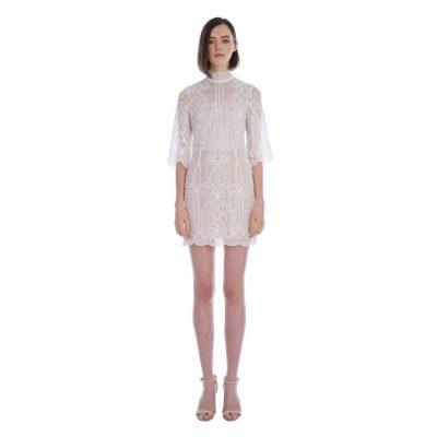 Tatiana Embroidered Mini Dress
