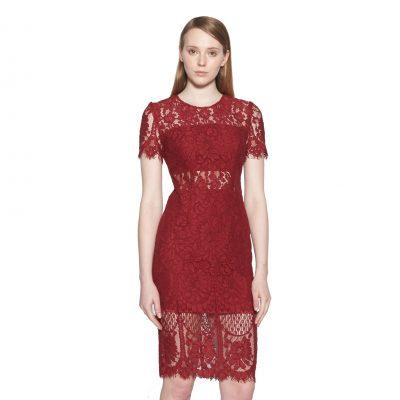 Coretta Lace Pencil Dress