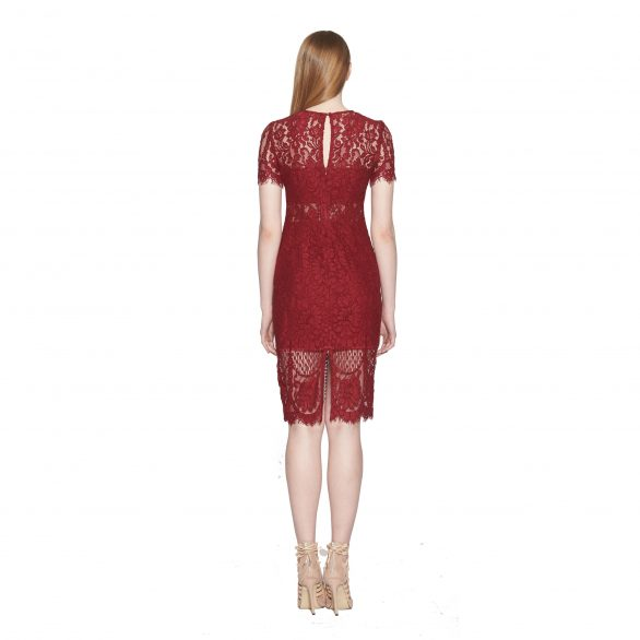 Coretta Lace Pencil Dress